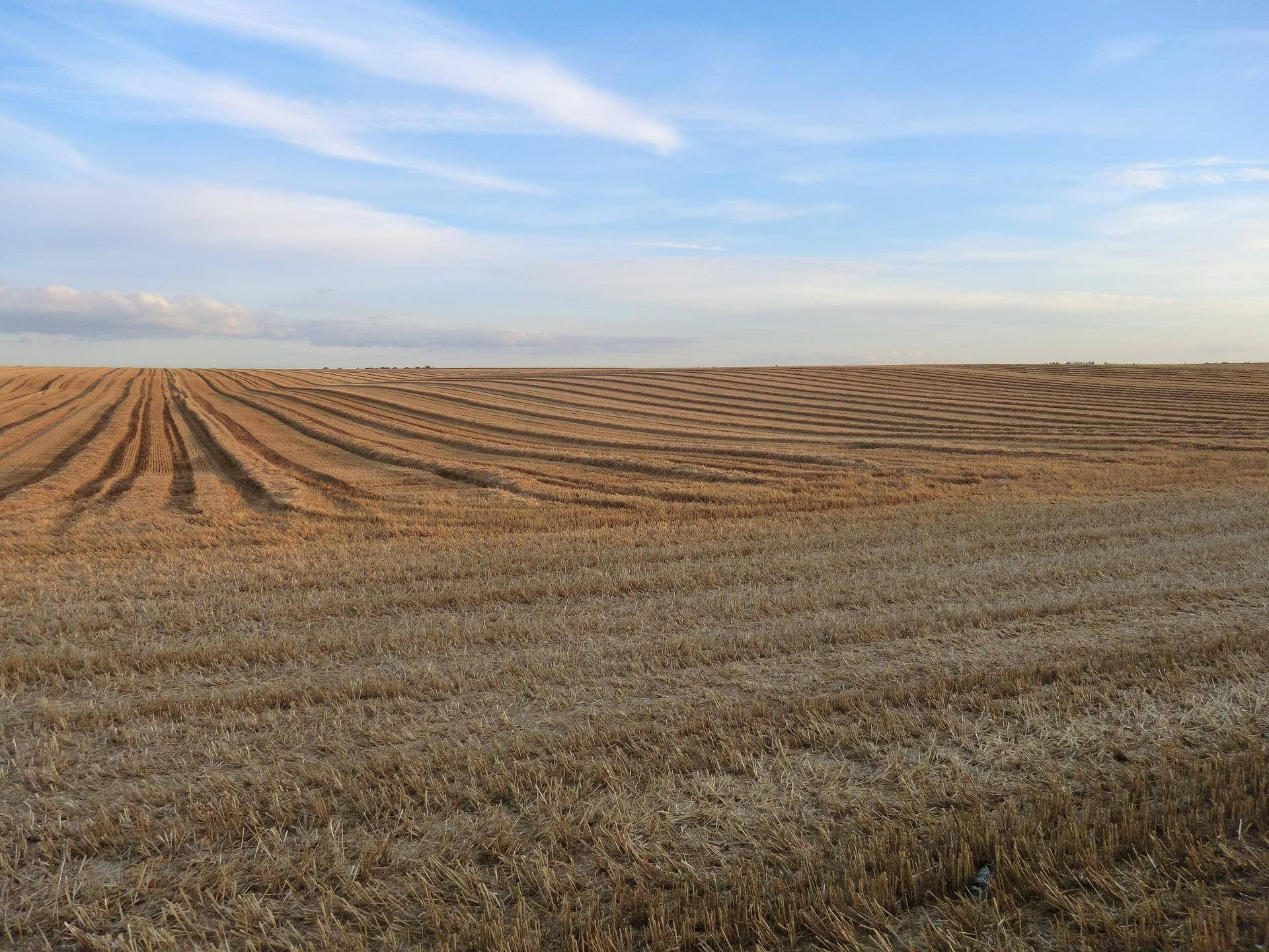 中国农业离不开微亚洲城888肥料
